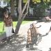 Piden cuidar el mobiliario público de la Plaza de Armas de Los Andes