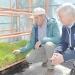 Con forraje hidropónico ganadero de San Esteban le hace frente a la sequía